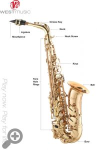 First Time Alto Saxophone Players - An Introduction | West Music
