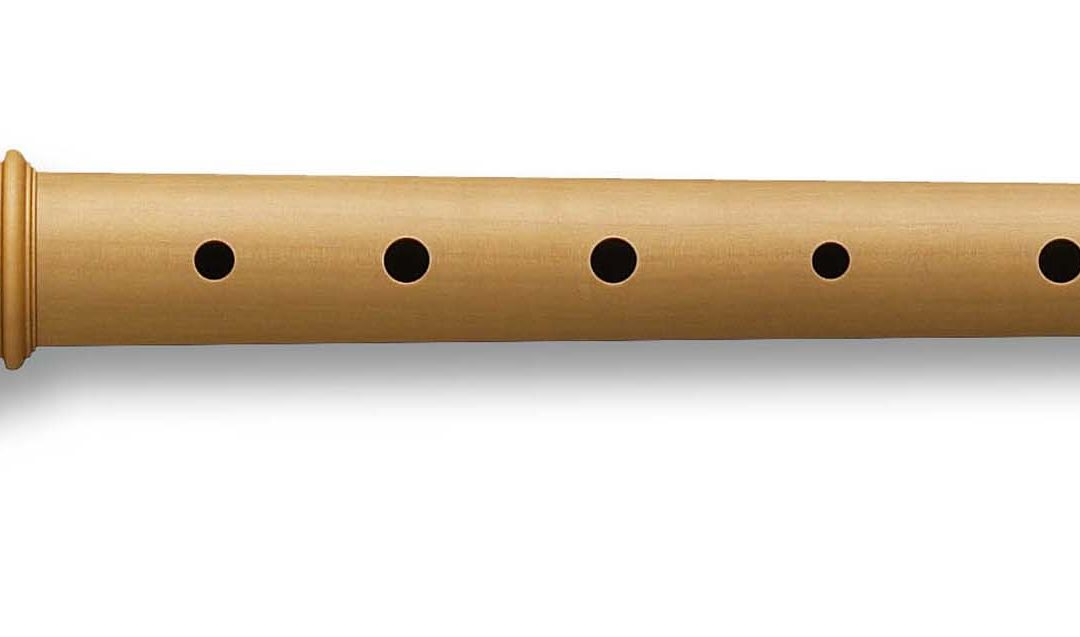4 Steps to Master the Recorder Notes